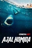 Ajal komida Premyera 2021 Uzbek tilida O'zbekcha tarjima kino Full HD tas-ix skachat